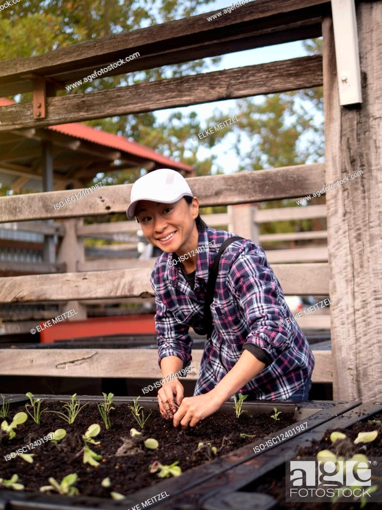 Stock Photo: Australia, Melbourne, Portrait of smiling woman working in community garden.