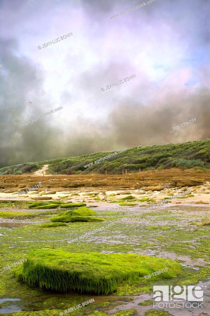 Stock Photo: France, 85, Jard sur Mer: Beach Veillon.