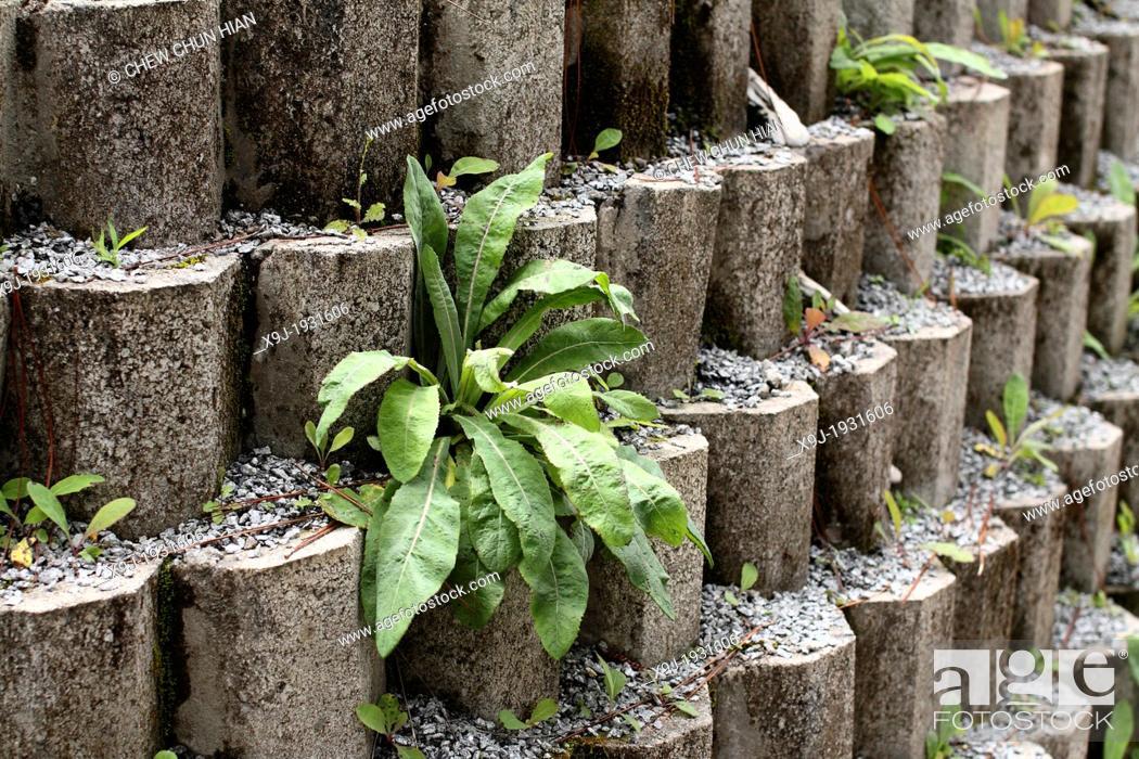 Stock Photo: Close up texture of grey concrete Brick.