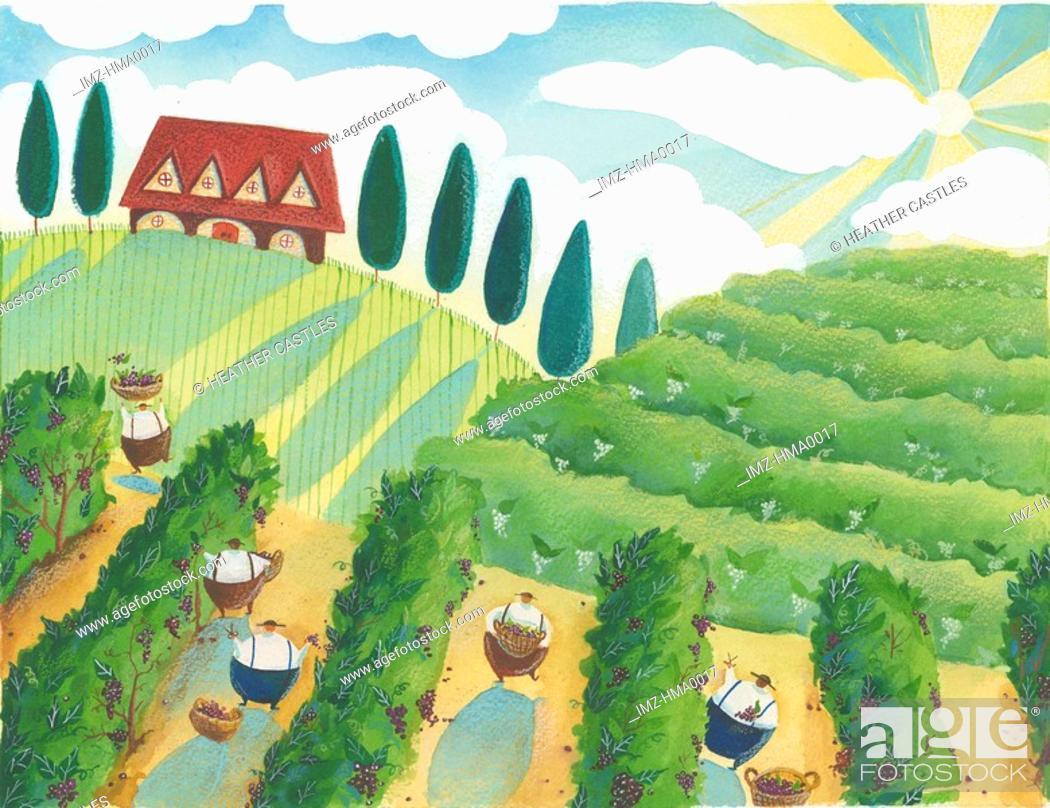 Stock Photo: farmers harvesting.