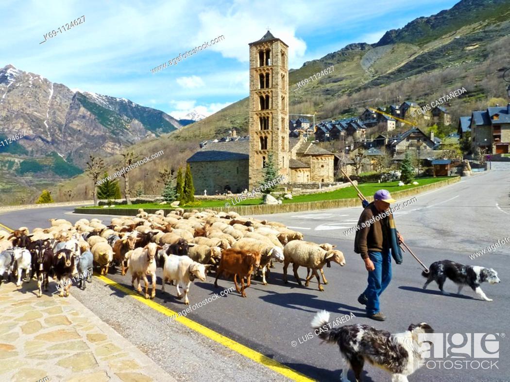 Stock Photo: Shepherd through Taüll, Vall de Boi, Pyrenees Mountains, Lleida province, Catalonia, Spain.