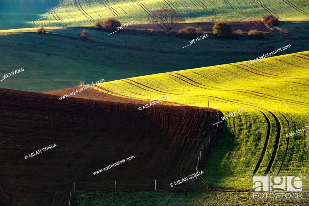 Imagen: Rural landscape of Turiec region in northern Slovakia.