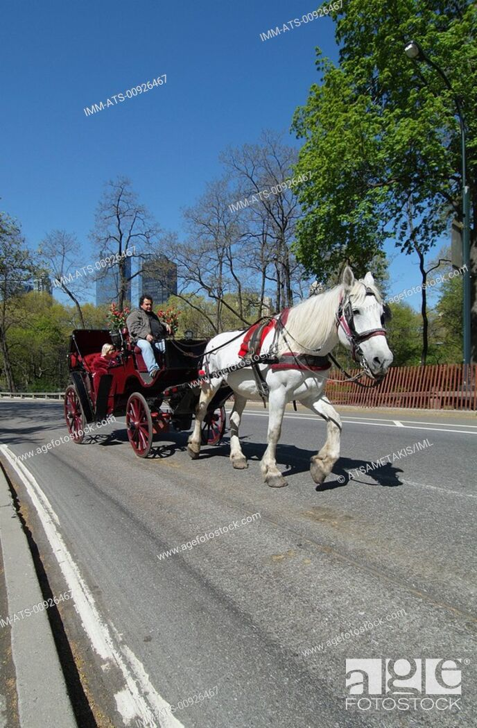 Stock Photo: Central Park, walk with horse drawn carriage, New York City, New York, United States, North America ,.
