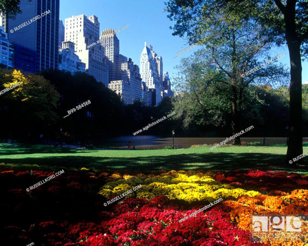 Stock Photo: Fall Foliage, The Pond, Central Park South Skyline, Manhattan, New York, Usa.