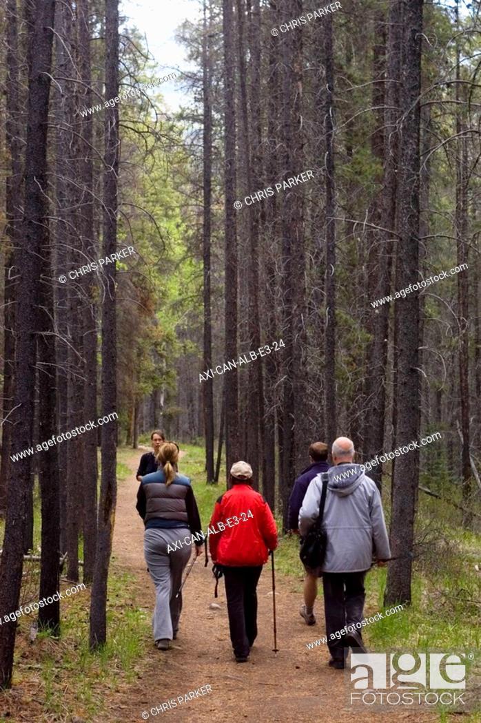 Stock Photo: Jasper National Park, Alberta, Canada.