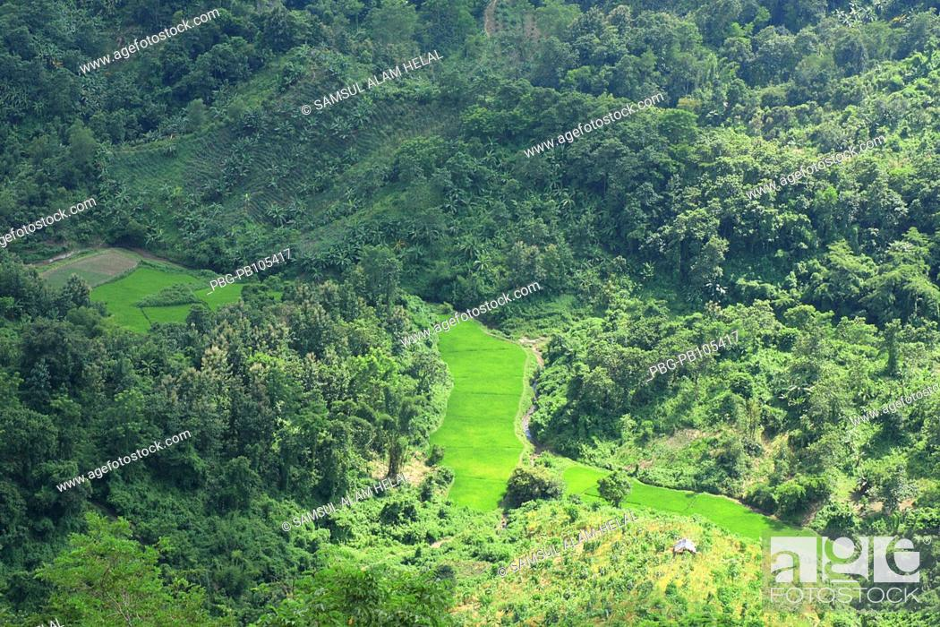 Stock Photo: Landscape of Bandarban, one of the hill districts located in the South-eastern part of Bangladesh, about 80 kilometer from Chittagong Beside Keokaradong.