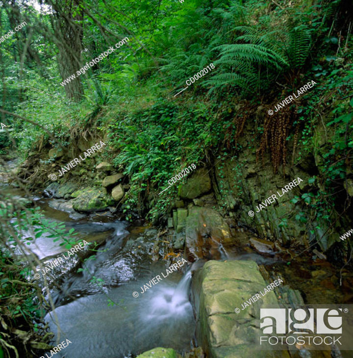 Stock Photo: Urola River. Guipúzcoa. Spain.