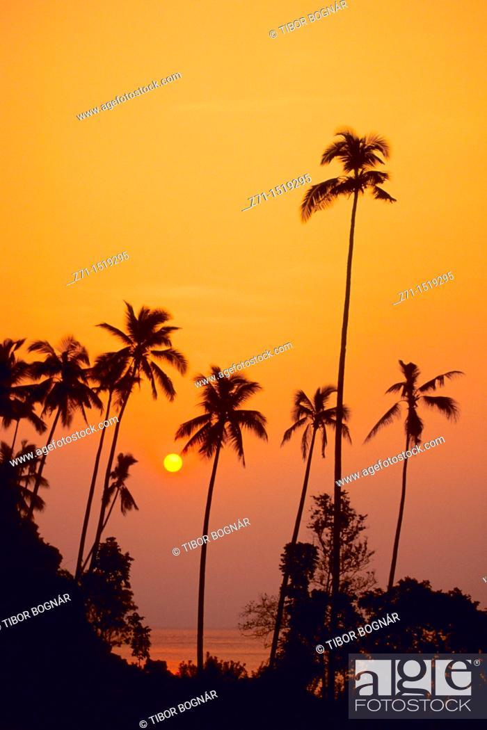 Stock Photo: Tioman island at sunset, Malaysia.