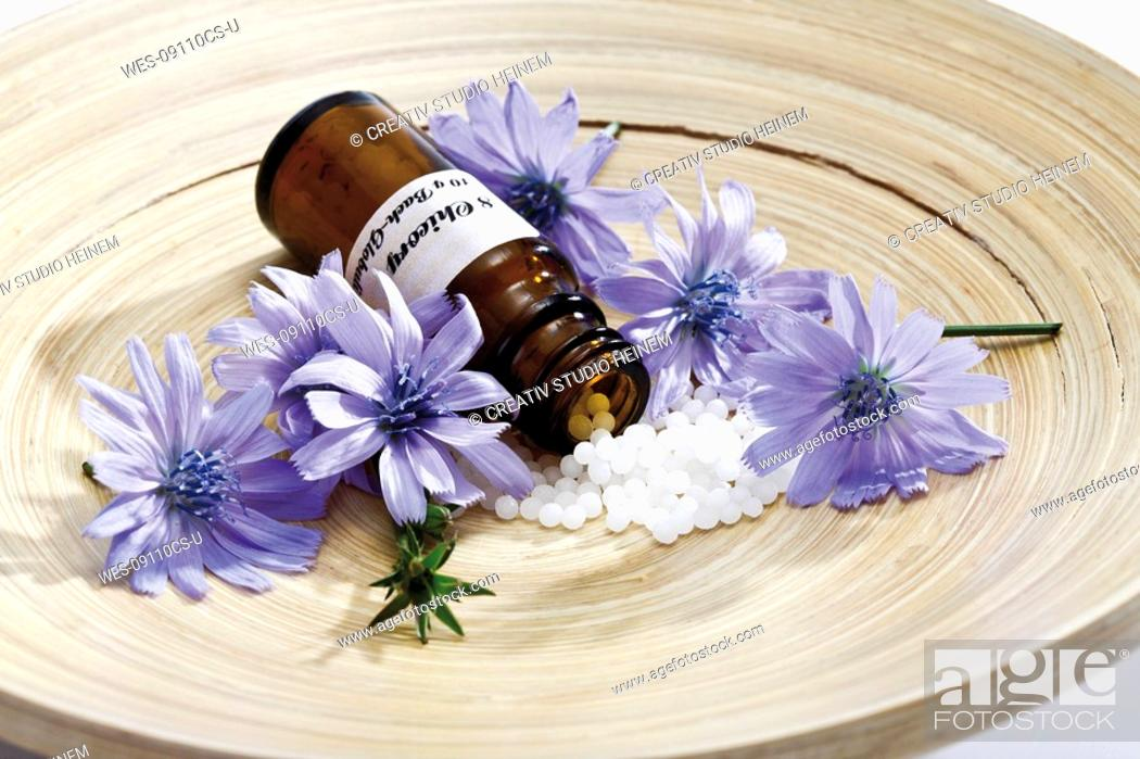 Stock Photo: Bottle with Bach Flower Stock Remedy, Chicory Cichorium intybus on wooden plate.