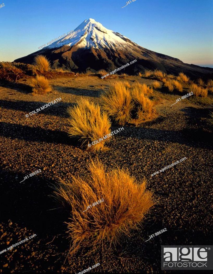 Stock Photo: Evening light on Mt Taranaki Egmont National Park New Zealand.