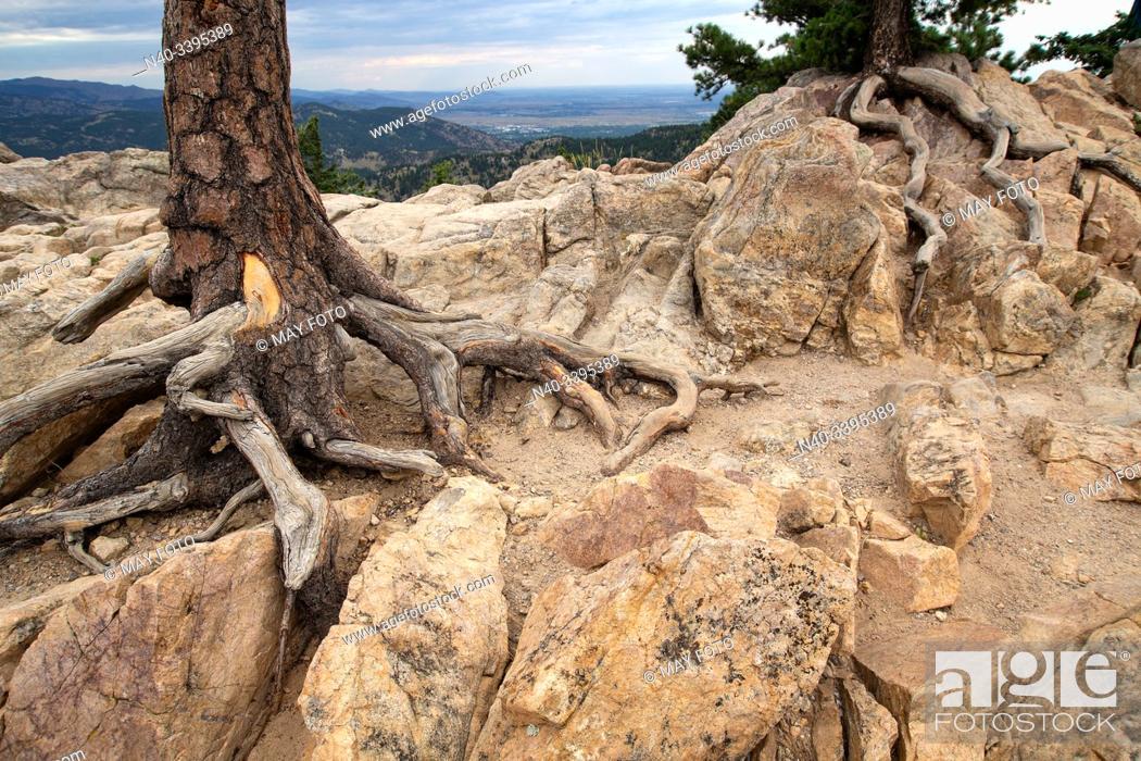 Imagen: Boulder, Chautauqua, Colorado, United States.