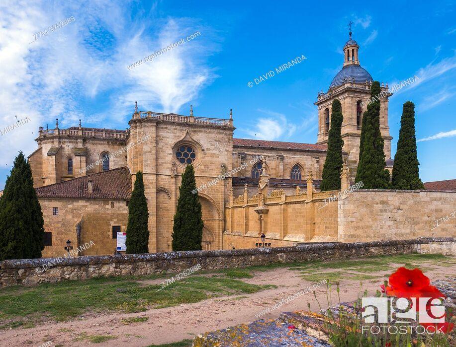 Stock Photo: Catedral de Santa María. Ciudad Rodrigo. Salamanca. Castilla León. España.