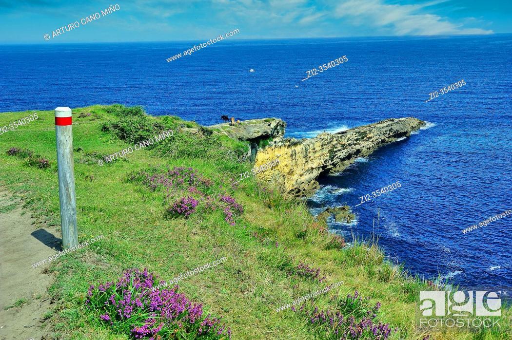 Imagen: The Basque coast. Hondarribia town, Guipuzcoa province, Spain.