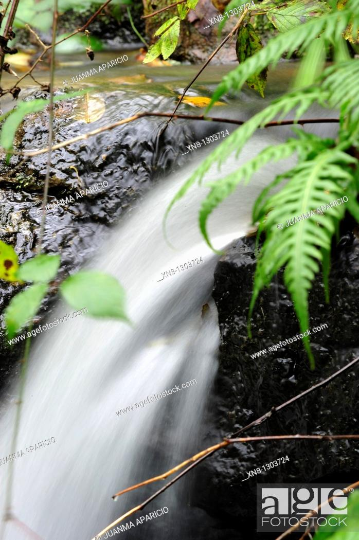 Stock Photo: Small waterfall in motion.