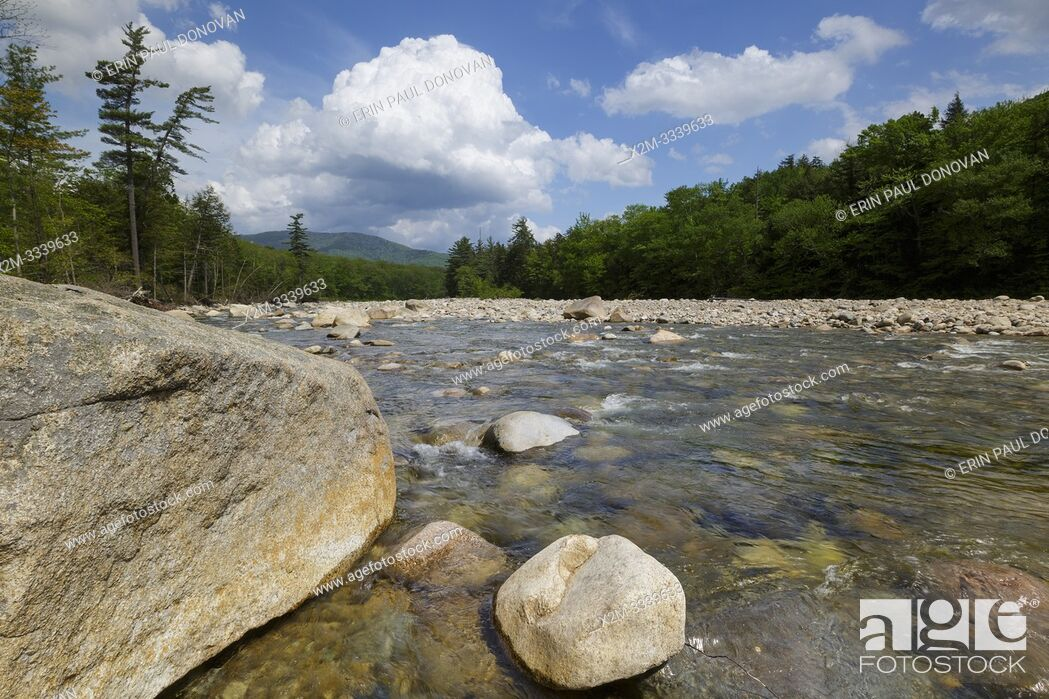 Stock Photo: East Branch of the Pemigewasset River in Lincoln, New Hampshire on a cloudy spring day. This river begins deep in the Pemigewasset Wilderness in the area known.