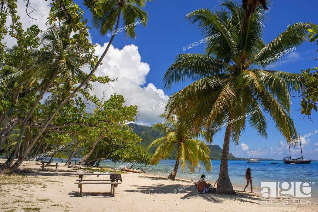 Imagen: Public beach Opunohu Beach and Ta'ahiamanu beach in Moorea, Cook's Capitan Bay, French Polynesia, Society Islands, South Pacific.