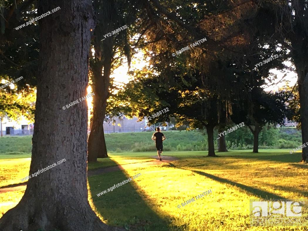Imagen: Man Jogging in Park at Twilight, Wellsville, New York, USA.