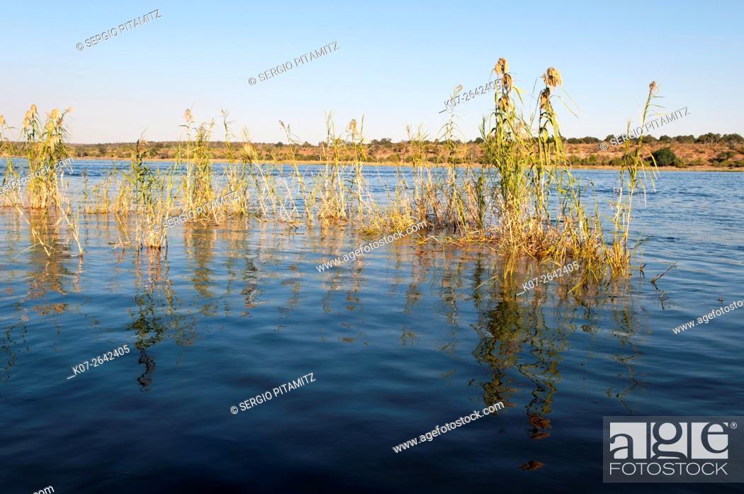 Stock Photo: Chobe River, Chobe National Park, Botswana.