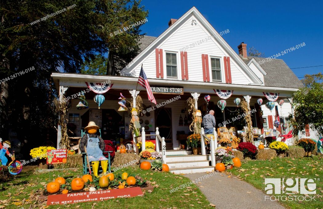 Imagen: Jackson New Hampshire pumpkins for Halloweenin Northern New England at Flossie's Country Store in fall foliage in October.