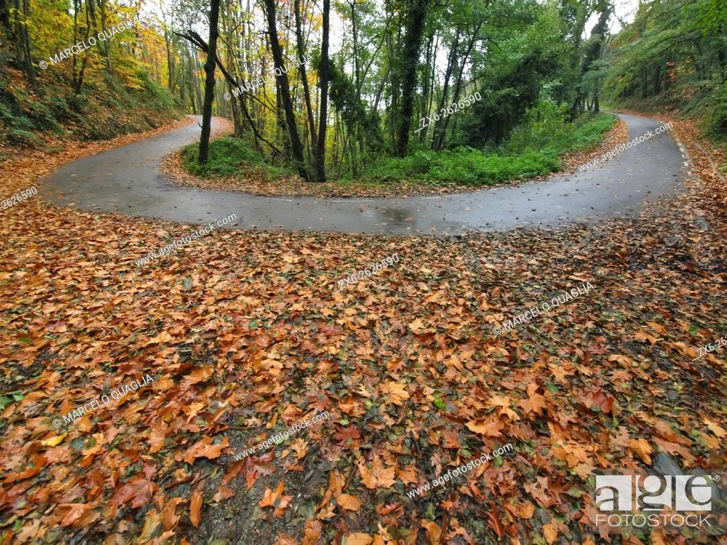 Stock Photo: Gualba village countryside road in a rainy autumn afternoon. Montseny Natural Park. Barcelona province, Catalonia, Spain.