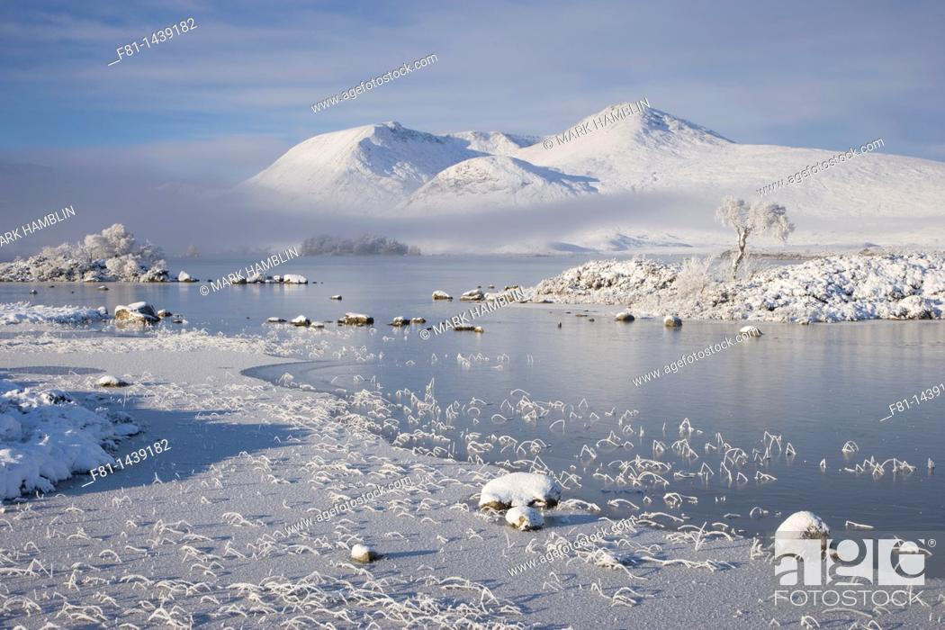 Stock Photo: Lochan na h-Achlaise and Clach Leathad 1099m in winter, Rannoch Moor, Highland, Scotland.