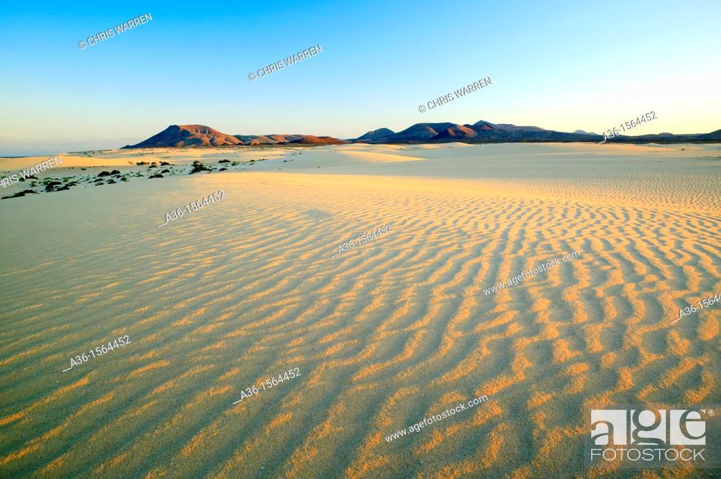 Stock Photo: Grandes Playas Corralejo Fuerteventura Canary Islands Spain.