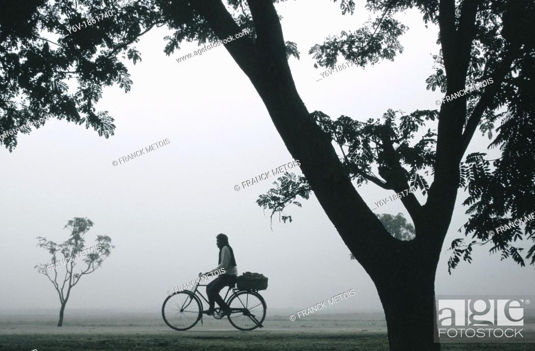 Stock Photo: During a foggy morning, a man is riding a cycle. Teraï region, Nepal.