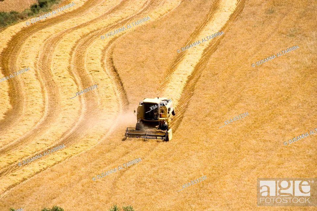 Stock Photo: Harvesting cereals with reaper doing curves and lines Solsonès, Lleida, Catalonia, Spain, Europe.
