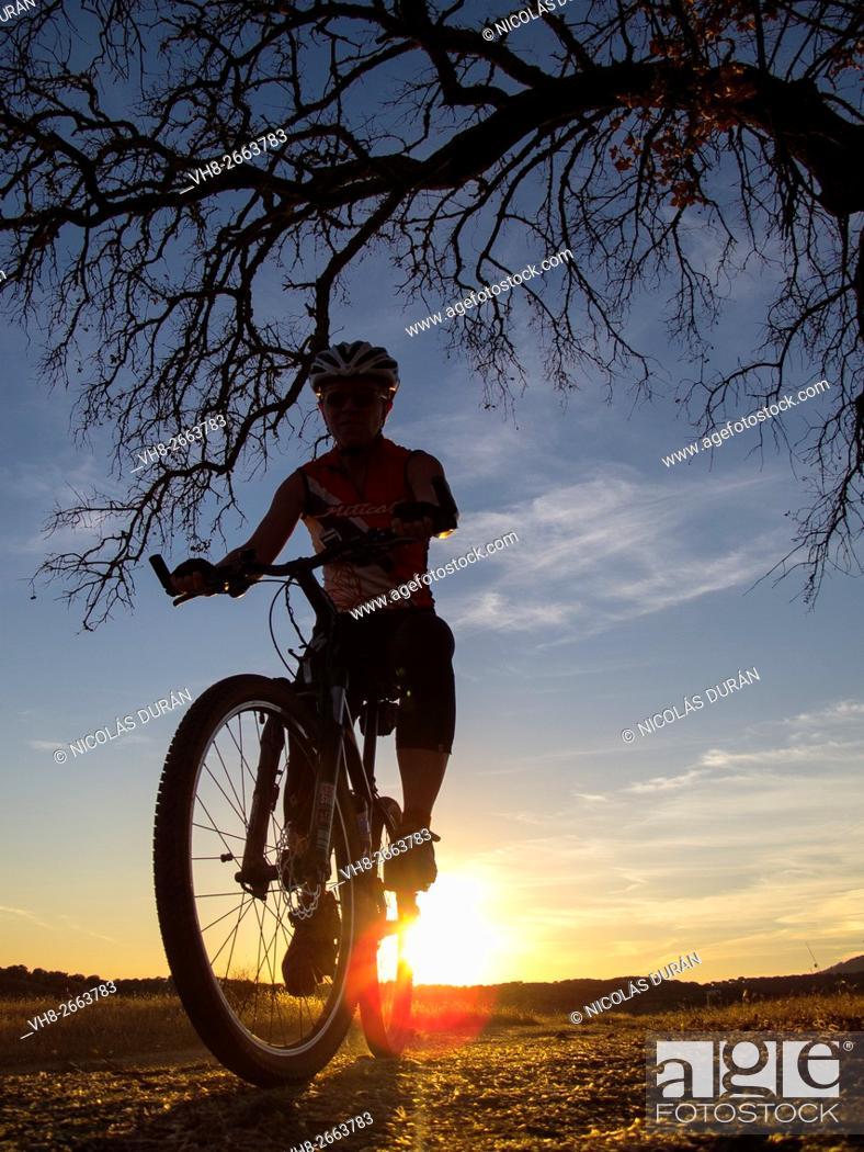 Stock Photo: Cyclist near Peña del Águila reservoir, Badajoz province, Extremadura, Spain.