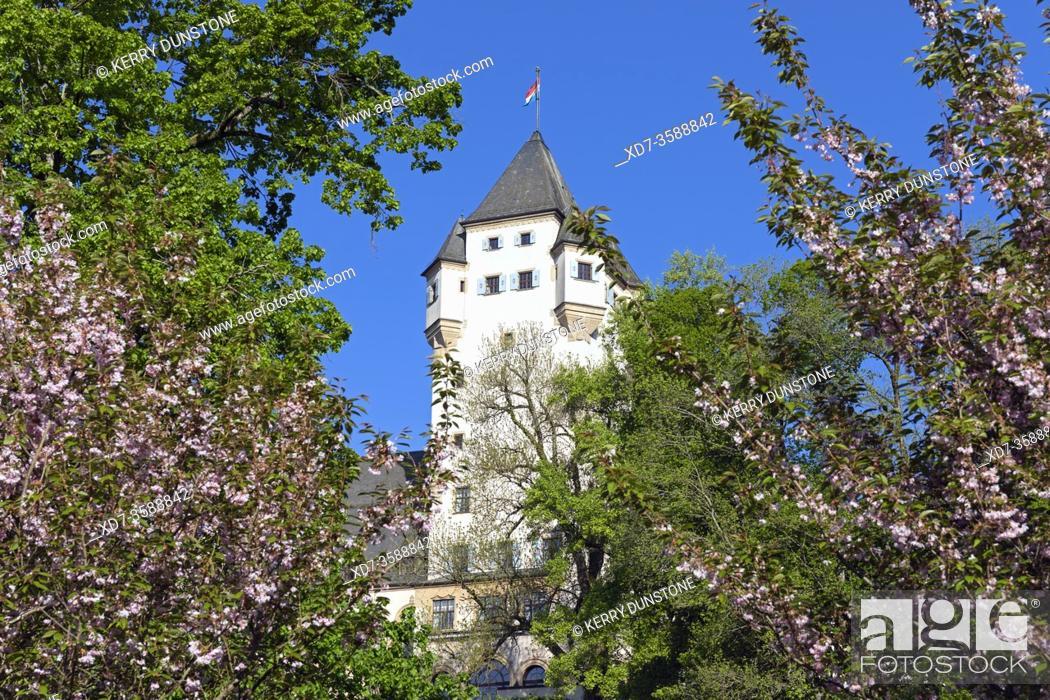 Imagen: Europe, Luxembourg, Colmar-Berg, Berg Castle (The Grand Duke of Luxembourg's Principal Residence) set amongst beautiful gardens.