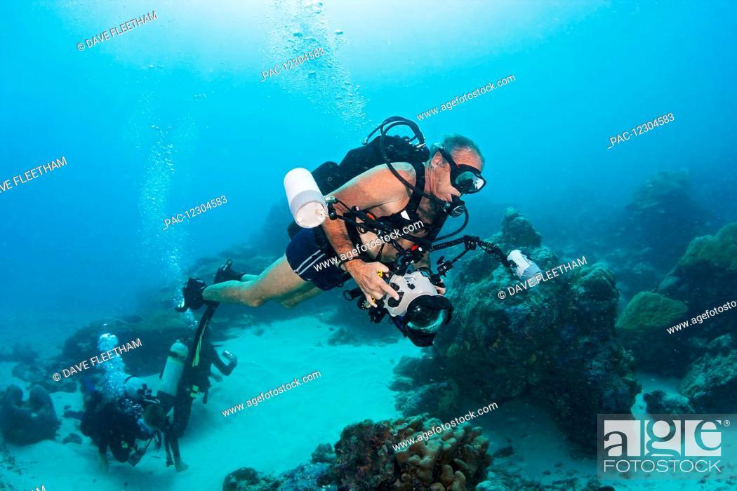 Stock Photo: An underwater photographer off the island of Yap; Yap, Micronesia.