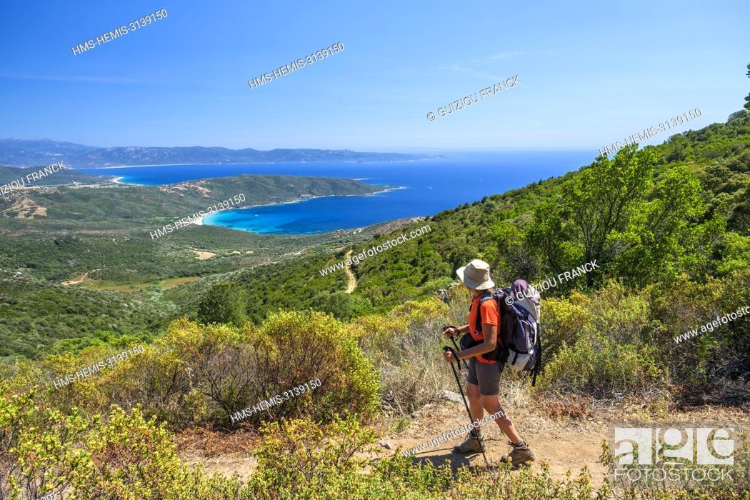 Imagen: France, Corse-du Sud (2A), Prunelli region, Mare e Monti Sud hiking trail, between Porto Pollo and Coti-Chiavari, view over the GUlf of Valinco and Cupabia bay.
