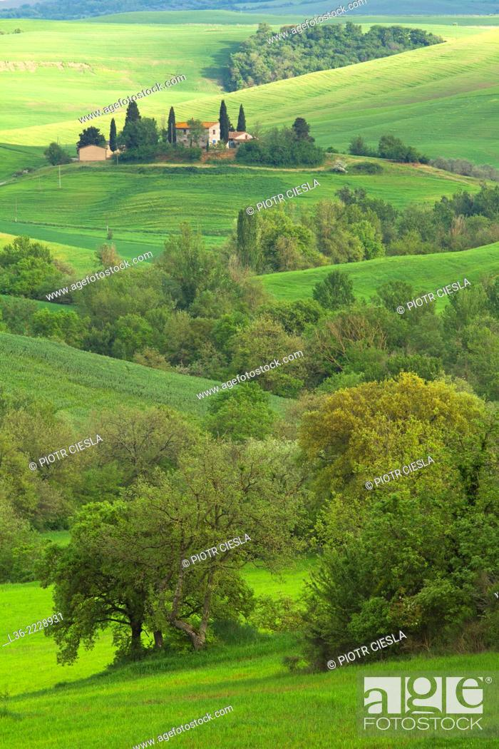 Stock Photo: Val d` Orcia Tuscany Italy View from Castiglione d`Orcia.