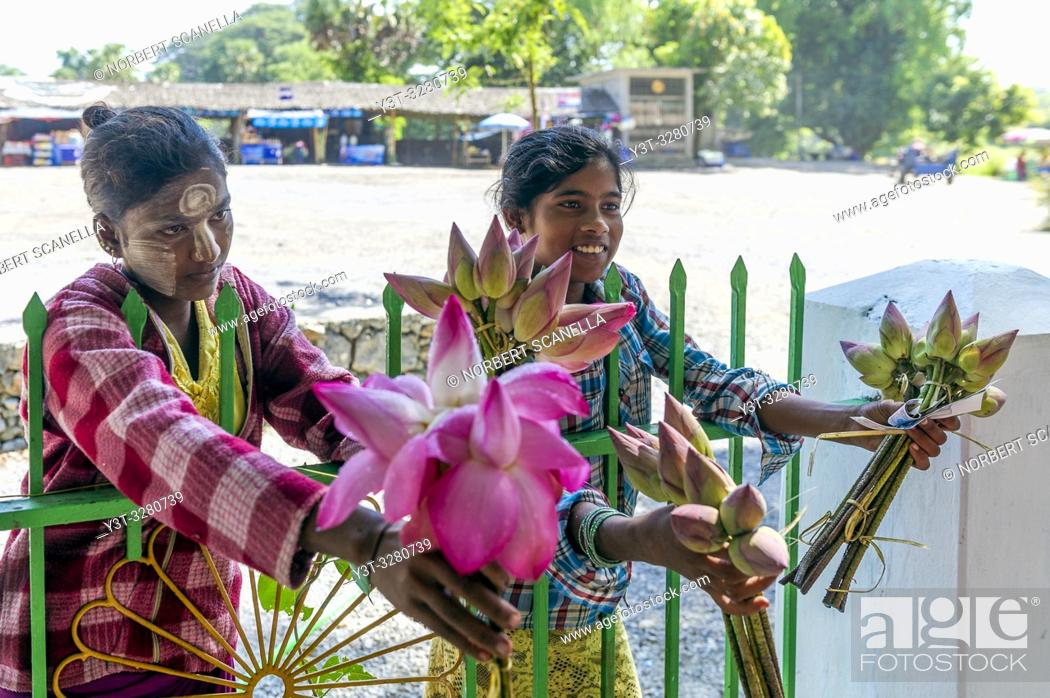 Stock Photo: Myanmar (formerly Burma). Kayin State (Karen State). Hpa An. Saleswomen lotus flowers.