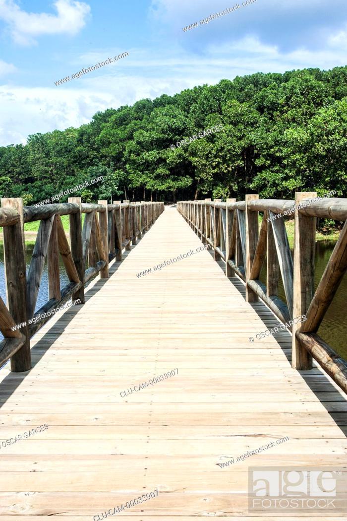 Stock Photo: Park Montelibano lake, Alto of San Jorge, Cordoba, Colombia.