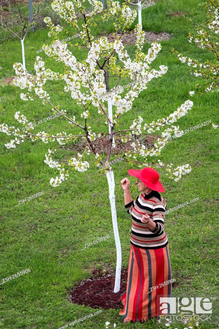 Stock Photo: Russia. Belgorod region. Woman in the lush spring garden.