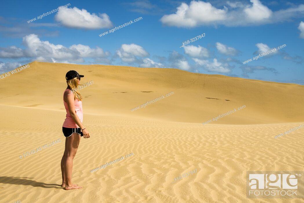 Stock Photo: Te Paki sand dunes, Northland, New Zealand.