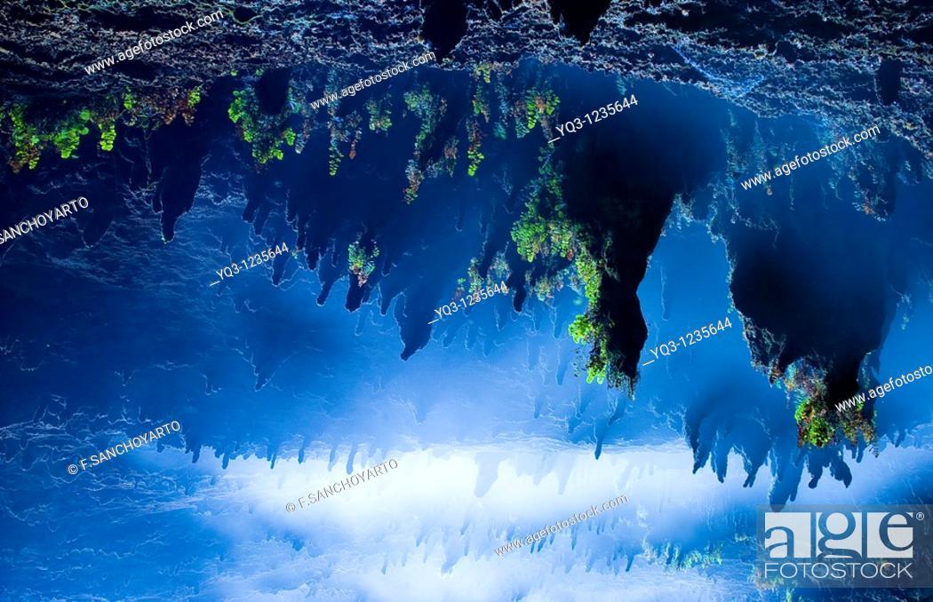 Stock Photo: Bóveda de entrada a la cueva de La Cubilla en Castro Urdiales, Cantabria.