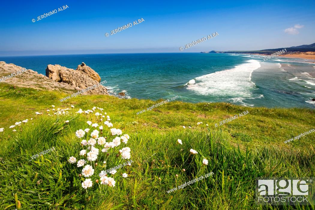 Stock Photo: Field of fresh green grass and Valdearenas beach. Liencres Natural Park. Cantabrian Sea. Santander, Cantabria Spain. Europe.