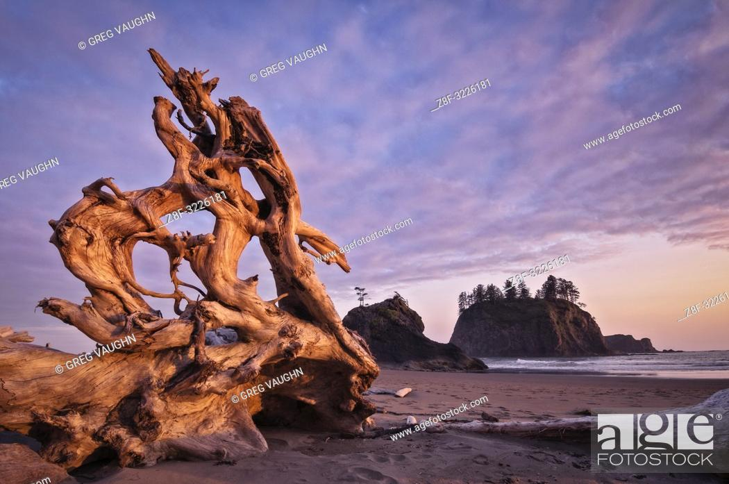 Imagen: Driftwood on Second Beach, Olympic National Park, Washington.