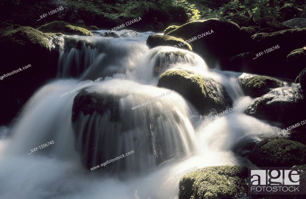 Stock Photo: The river Demänovka in Demänovska dolina, Nizke Tatry, Slovakia.
