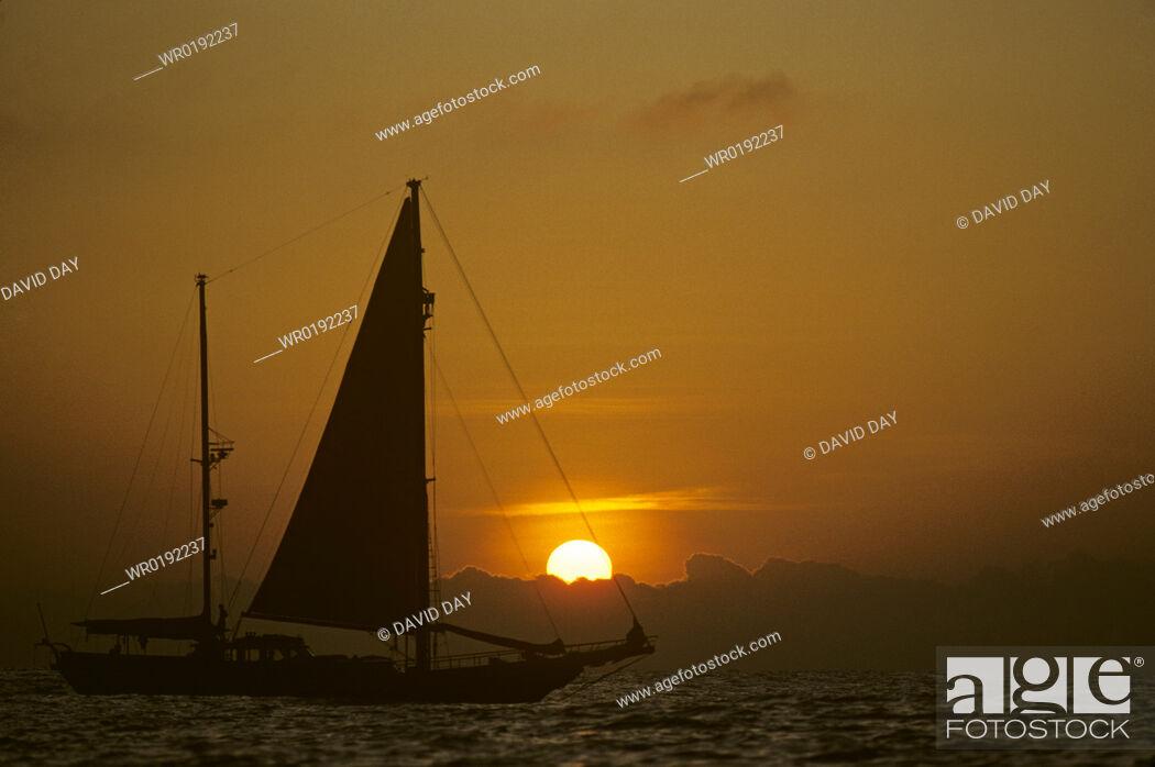 Imagen: Cetacean research yacht 'Odyssey' with setting sun Galapagos, Ecuador 1993.