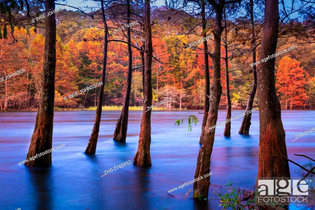 Photo de stock: Beavers Bend State Park is a 1, 300 acres Oklahoma state park located in McCurtain County. It is approximately 10. 5 miles north of Broken Bow.