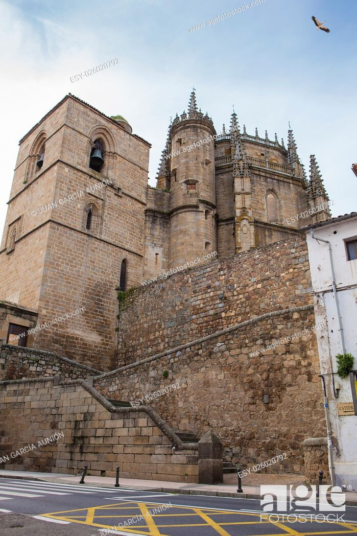 Photo de stock: Cathedral of Plasencia, Caceres, Extremadura, Spain.
