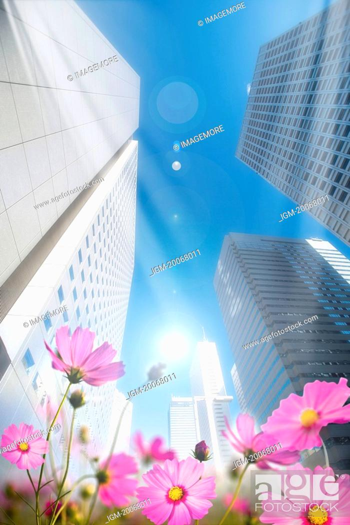 Stock Photo: Lohas, Environmental Conservation, Digitally generated image of skyscraper with flowers.