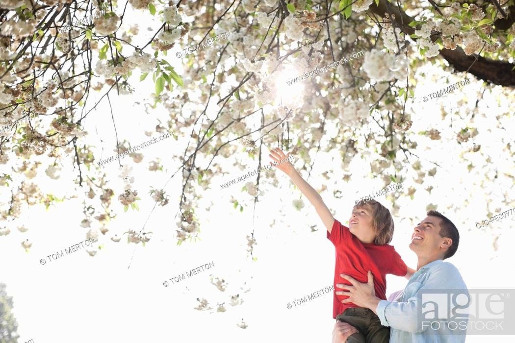 Stock Photo: Father and son playing under tree outdoors.