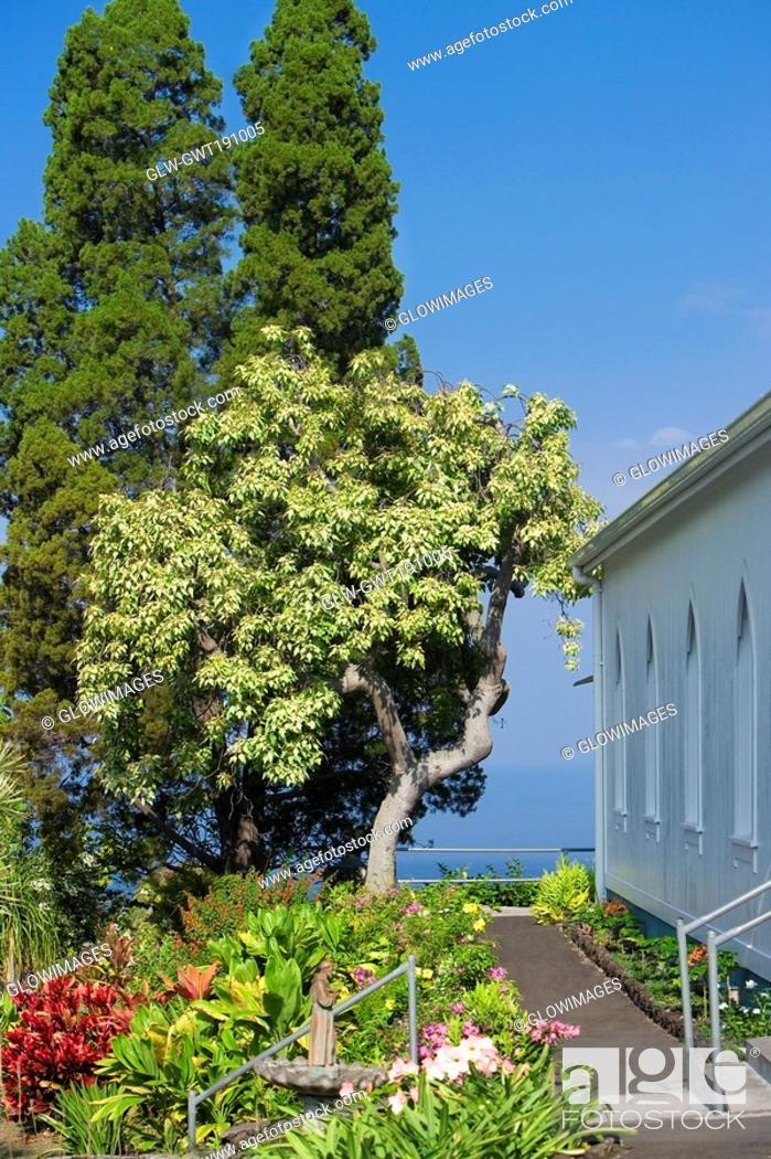 Stock Photo: Trees and flowers near a church, St  Benedict's Catholic Church, Honaunau, Hawaii Islands, USA.
