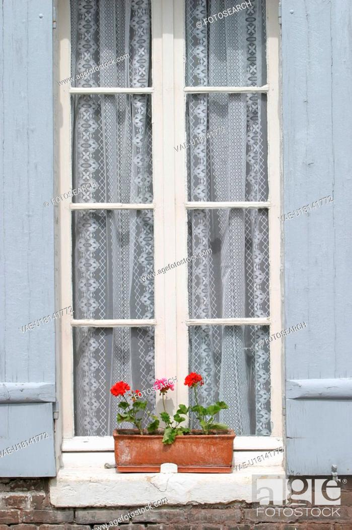 Stock Photo: Blooms, Blossoms, Building, Curtains, Day, Developed.
