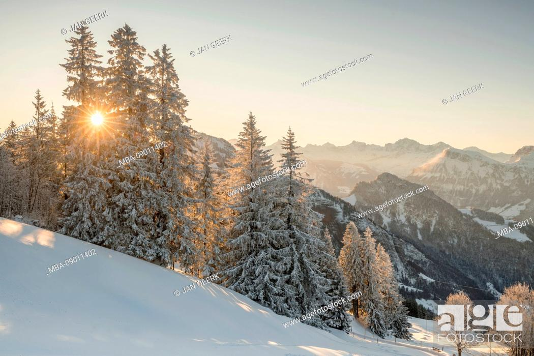Stock Photo: Rigi in winter, Central Switzerland.