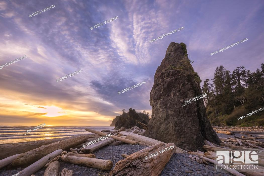Imagen: Driftwood, sea stack and sunset at Ruby Beach, Olympic National Park, Washington.